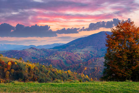 autumnal rural landscape at dusk. beautiful countryside in mountains. trees in fall foliage on green rolling hills. dramatic clouds above the distant ridge Stock Photo