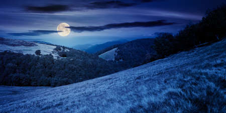mountain landscape at night. trees on the meadow in dry grass in full moon light. ridge in the distance. beech forest on the hills. clouds on the sky