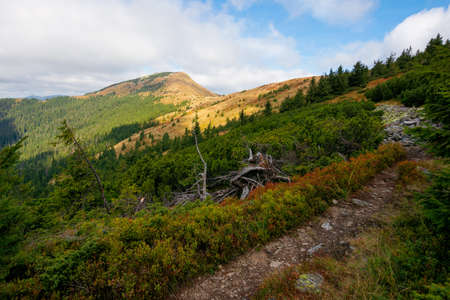 peak of the mountain strymba. carpathian landscape in autumn. path uphill. colorful scenery. clouds on the sky. sunny weather. Stock Photo