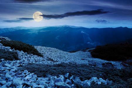 mountain landscape with stones at night. juniper tree among the rocks and grass. dramatic nature scenery in full moon light. great view in to the distant ridge
