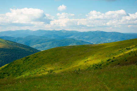 summer landscape of runa mountain. grassy hills of alpine meadow (polonyna). beautiful destination of ukrainian carpathians. clouds on the sky Stock Photo
