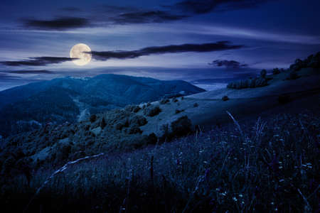summer landscape in mountains at night. amazing scenery with herbs in fields on rolling hills in full moon light. clouds on the blue sky above the distant ridge Stock Photo