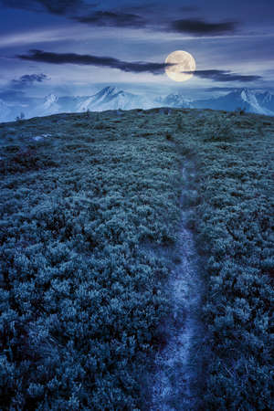 path uphill to the mountains at night. tatra ridge in the distance in full moon light. composite imagery. mysterious success concept