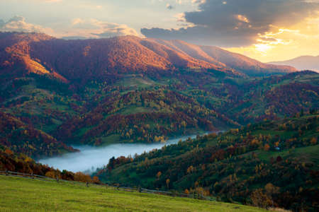 foggy morning in autumn mountains. countryside scenery in fall colors. colorful trees on the hillside. landscape beneath a sky with clouds at sunrise