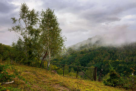 rural landscape in mountain on a cloudy morning. dramatic hazy scenery of carpathian countryside Stock Photo