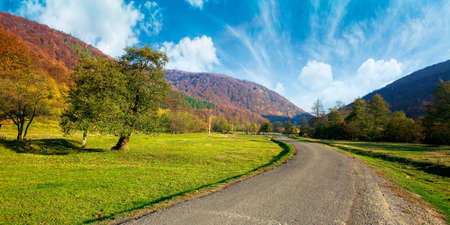 country road winding through the valley. wonderful autumn landscape in mountains. forest on hills in colorful foliage. sunny weather with fluffy clouds on the sky