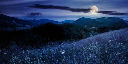 pasture on a sunny day in mountains at night. wonderful countryside landscape of carpathians in full moon light. fluffy clouds on the sky Foto de archivo