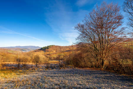mountainous countryside in november. leafless trees on hills rolling in to the rural valley. snow capped ridge in the distance. sunny morning scenery Stock Photo