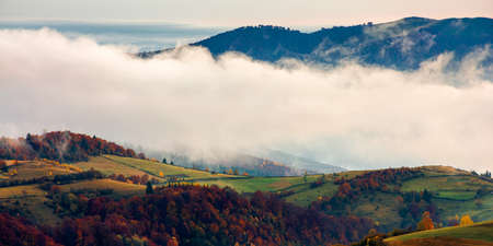 stunning rural landscape. foggy scenery at sunrise in autumn season. trees on mountain hills in colorful foliage Stock Photo - 155715107