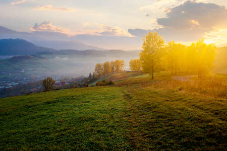 stunning rural landscape. foggy scenery at sunrise in autumn season. trees on mountain hills in colorful foliage. village in the valley. panoramic view