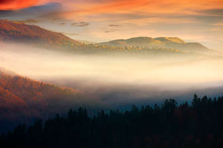 rolling hills in fog at sunrise. beautiful mountain landscape in autumn season. clouds on the morning sky. dramatic nature scenery
