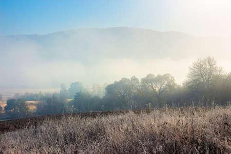 empty rural fields in morning mist. countryside scenery in autumn.
