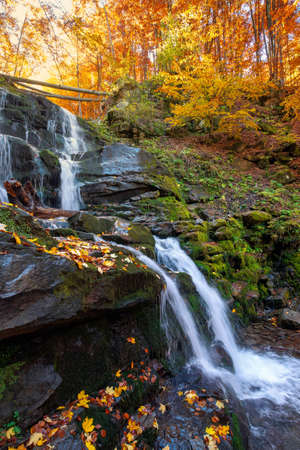 waterfall in the autumn forest. trees in colorful foliage. water runs among the rocks. fallen leaves on the shore. beautiful fall scenery on a sunny day