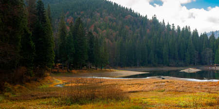 mountain lake among the coniferous forest. wonderful nature scenery in autumn. dry sunny weather with clouds on the sky Stock Photo - 156600762