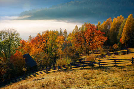 stunning rural landscape. foggy scenery at sunrise in autumn season. trees on mountain hills in colorful foliage. fence on the hillside Stock Photo
