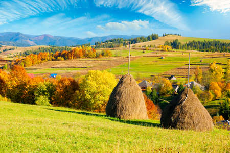 rural landscape in mountains. haystack on the hill. village in the valley. scenery in fall colors. beautiful sunny weather with fluffy clouds on the sky
