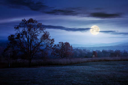 gorgeous countryside at dawn in autumn at night. trees in colorful foliage on the grassy field in full moon light. mountains in the distance Stock Photo
