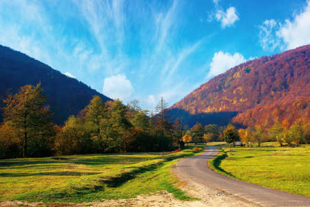 trees along the countryside valley. beautiful autumn scenery in mountains. forest on hills in fall colors. wonderful sunny weather. blue sky with clouds