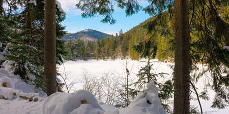 snow covered mountain lake among the forest. green spruce trees on the shore. beautiful sunny weather. clouds on the sky