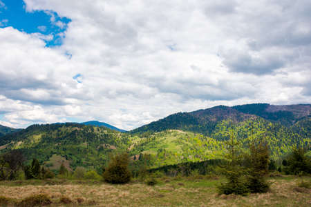 mountain landscape in spring. cloudy sky