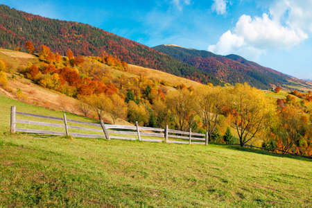 rural landscape in mountains. fence on the hill. scenery in fall colors. beautiful sunny weather with fluffy clouds on the sky