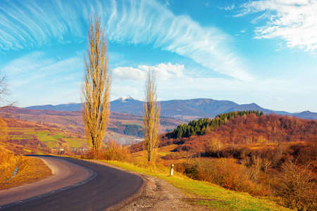 country road in autumn. morning scenery in mountainous rural area. trees in fall foliage on the pass. bright sunny weather 免版税图像