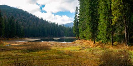 mountain lake among the coniferous forest. wonderful nature scenery in autumn. dry sunny weather with clouds on the sky Stock Photo - 157845934