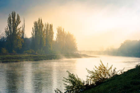 misty morning sunrise on the river. beautiful autumnal scenery with glowing sky. bridge in the distance. pravoslavna embankment of uzhgorod, ukraine