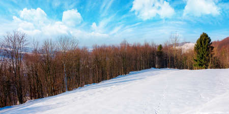 winter countryside on a sunny day. forest on snow covered hills. mountain ridge in the distance beneath a bright blue sky with clouds