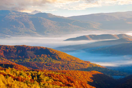 thick fog over the rural hills in morning light. dramatic Carpathian countryside autumnal scenery Stock Photo