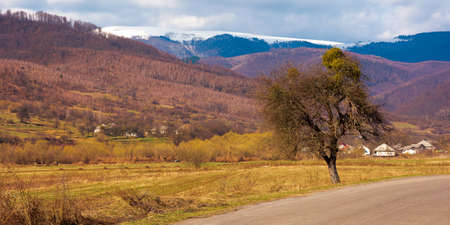 old road through countryside in early spring. leafless trees along the way. snow capped mountain in the distance. sunny weather with clouds on the sky