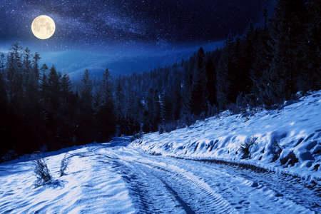 carpathian countryside on a winter night. beautiful mountainous rural landscape in full moon light. road through snow covered meadow among spruce forest on the hill