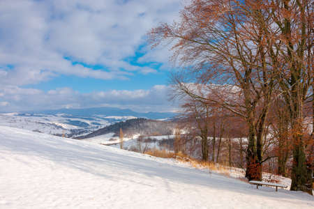 rural landscape in wintertime. trees on the snow covered hill. beautiful scenery of carpathian mountains. village in the distant valley. wonderful frosty and sunny weather, clouds on the sky