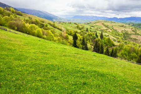 green meadows of mountainous countryside. cloudy weather in springtime. ridge in the distance. beauty of rural landscape