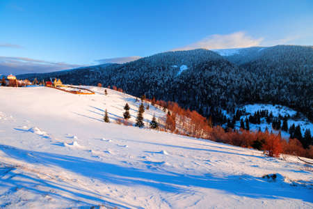 winter rural landscape at sunrise. trees and fields on snow covered hills. mountain ridge in the distance beneath a bright blue sky with clouds Stock Photo