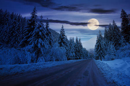 road through mountain landscape in winter at night. spruce forest covered in snow. dramatic sky with clouds glowing in full moon light Stock Photo