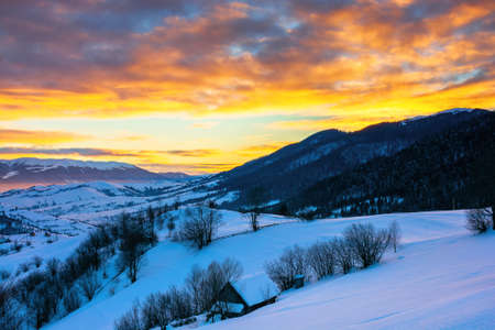 winter landscape in mountains at sunrise. beautiful rural area of carpathian mountains with snow covered hills. glowing clouds on the sky. frosty weather Stock Photo