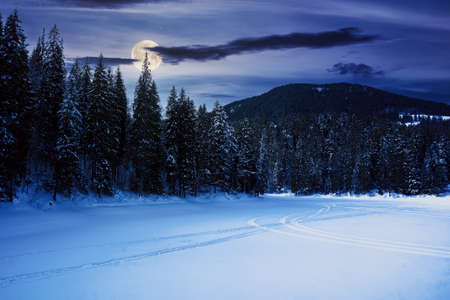 frozen mountain lake among spruce forest at night. beautiful winter landscape in full moon light Stock Photo