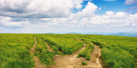 path through green grassy mountain meadow. beautiful summer landscape. fine weather with fluffy clouds on the blue sky