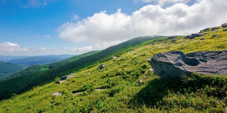 mountain meadow on a sunny morning. cloud rolling above the hill with rocks among the grass. warm summer weather. beauty of carpathian landscape in green and blue