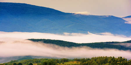 glowing fog in the rural valley at dawn. beautiful mountain landscape in springtime. view from the hill