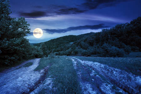 dirt road through forested countryside at night. beautiful summer rural landscape in mountains. adventure in nature scenery in full moon light Stock Photo