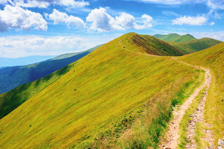 path through borzhava ridge. beautiful summer nature landscape of carpathian mountain. green hillside meadows beneath a blue sky with clouds. stoj peak in the distance Stock Photo