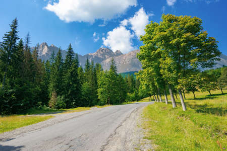 asphalt road through forested mountains. beautiful countryside transportation background. composite landscape with high tatra ridge in the distance. sunny weather in summertime