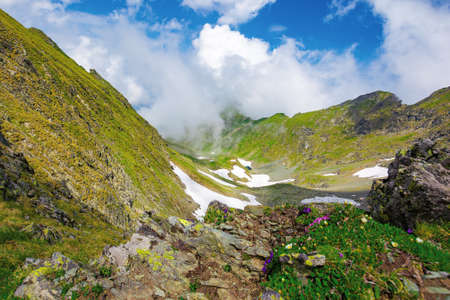 summer landscape of romanian carpathian mountains. wonderful nature scenery with clouds on the peaks and snow in the valley. hills in grass and rocks. travel to fagaras ridge
