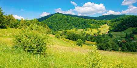 rural landscape of ukrainian carpathians. beautiful summer scenery in mountains. green grassy meadow by the forest on the hill. mountain peak beneath a sky with fluffy clouds on a sunny day Stock Photo