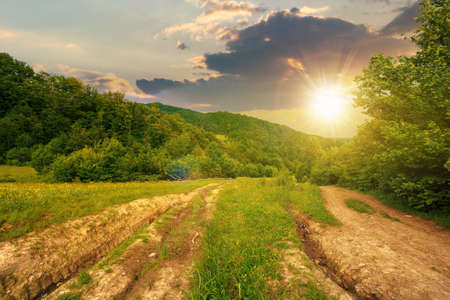 dirt road through forested countryside at sunset. beautiful summer rural landscape in mountains. adventure in nature scenery in evening light Stock Photo
