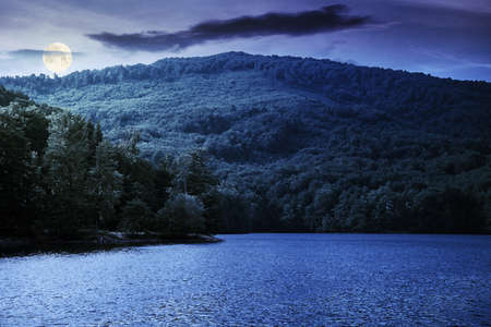 lake among beech forest in summer at night. beautiful nature landscape in mountains. vihorlat national park in full moon light