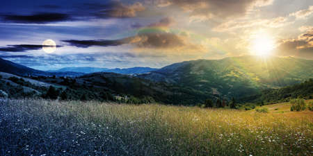 day and night time change concept above rural landscape with blooming grassy meadow. beautiful nature scenery of carpathian mountains with sun and moon. fluffy clouds on the blue sky