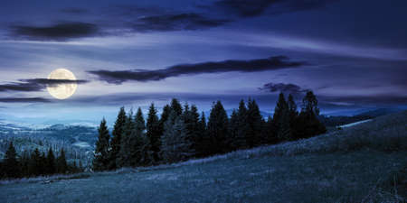 forest on the grassy meadow in mountains at night. beautiful countryside landscape in full moon light. fluffy clouds on the blue sky above the distant borzhava ridge. summer adventures in carpathians